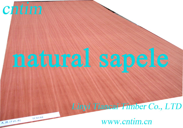 natural /technological Sapele wood veneer  three-ply bo