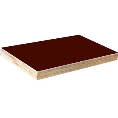 Film Faced Plywood / Concrete Plywood
