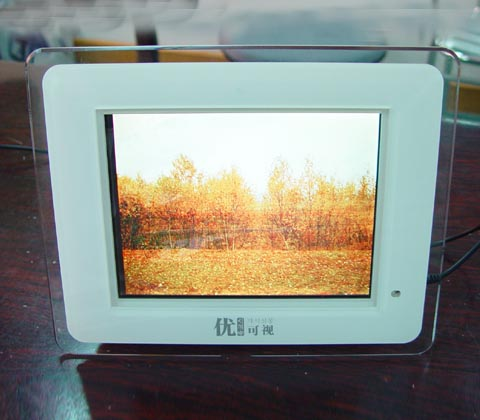 digital photo frame Support Flash Card such as CF,MS,SD