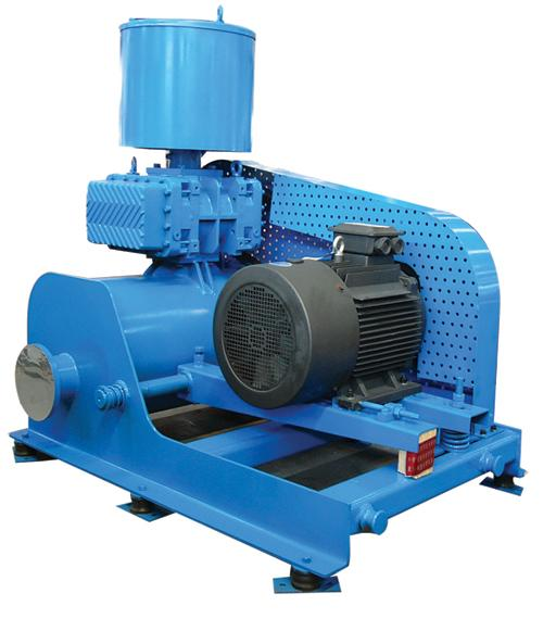 Supply Chinese Roots Blower Vacuum Pump, Supply Chinese